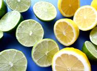 流しそうめんの薬味 レモン